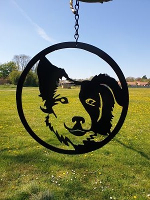 Wall Art - Border Collie - Dawn Caley - Westfield Metalcrafts