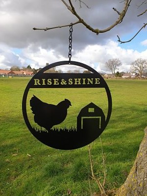 Wall Art - Rise and Shine Hen - Dawn Caley - Westfield Metalcrafts